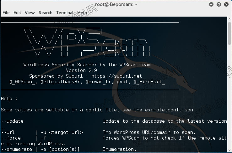 run-wpscan